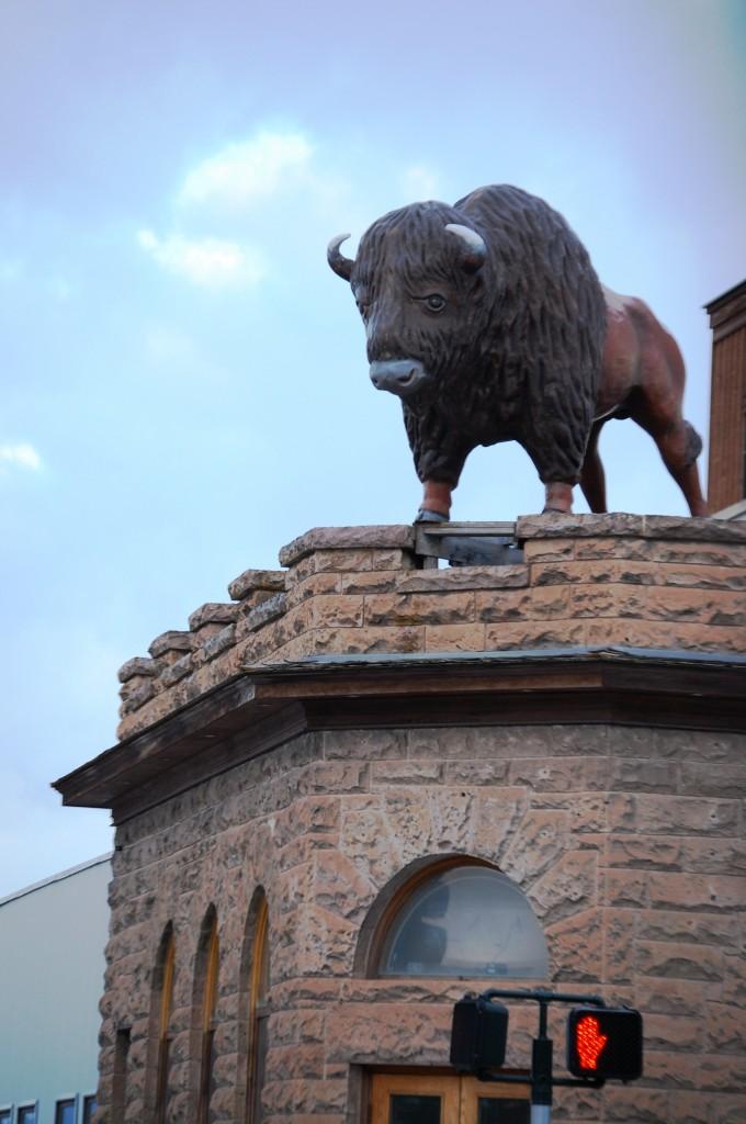 Fiberglass Buffalo Statue - Driggs, ID