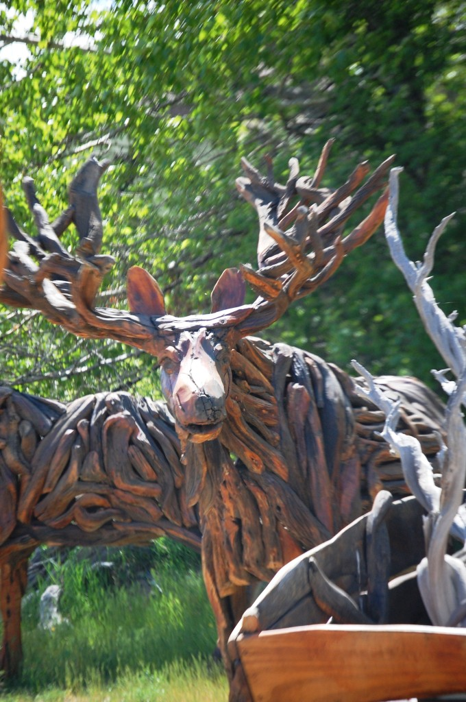 Rocky Fork Moose