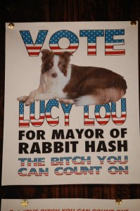 Rabbit Has Mayor - Lucy Lou