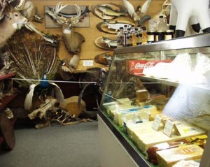 Taxidermy and Cheese