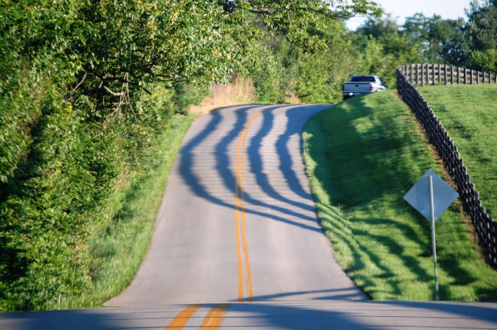 A road near Lexington KY with the shadows of the famed plank fences