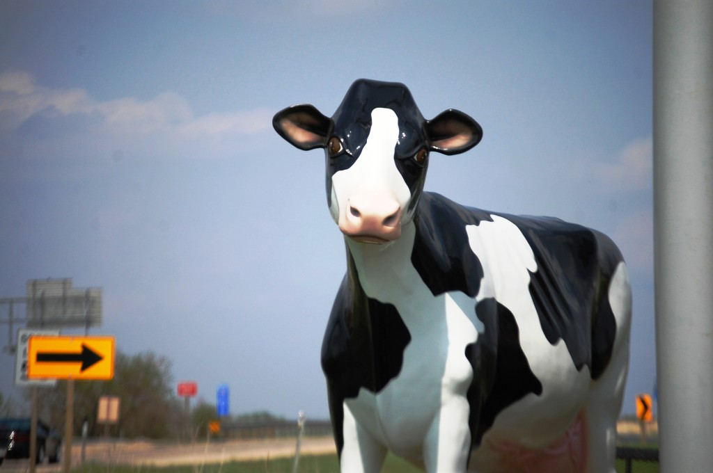 The Beloit Holstein Cow outside of Cornellier Superstore