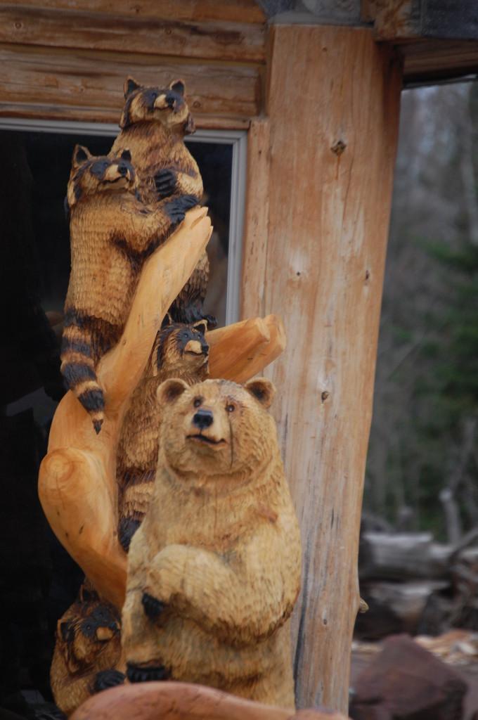 Raccoons and Bear