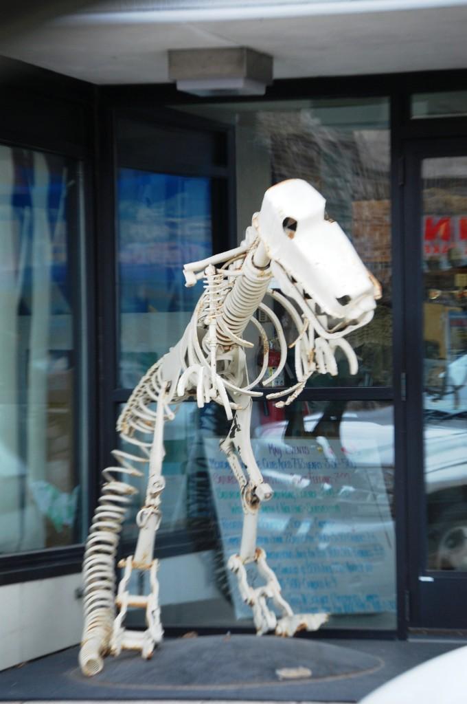 Scrap Metal T-Rex in front of a shop in Bemidji