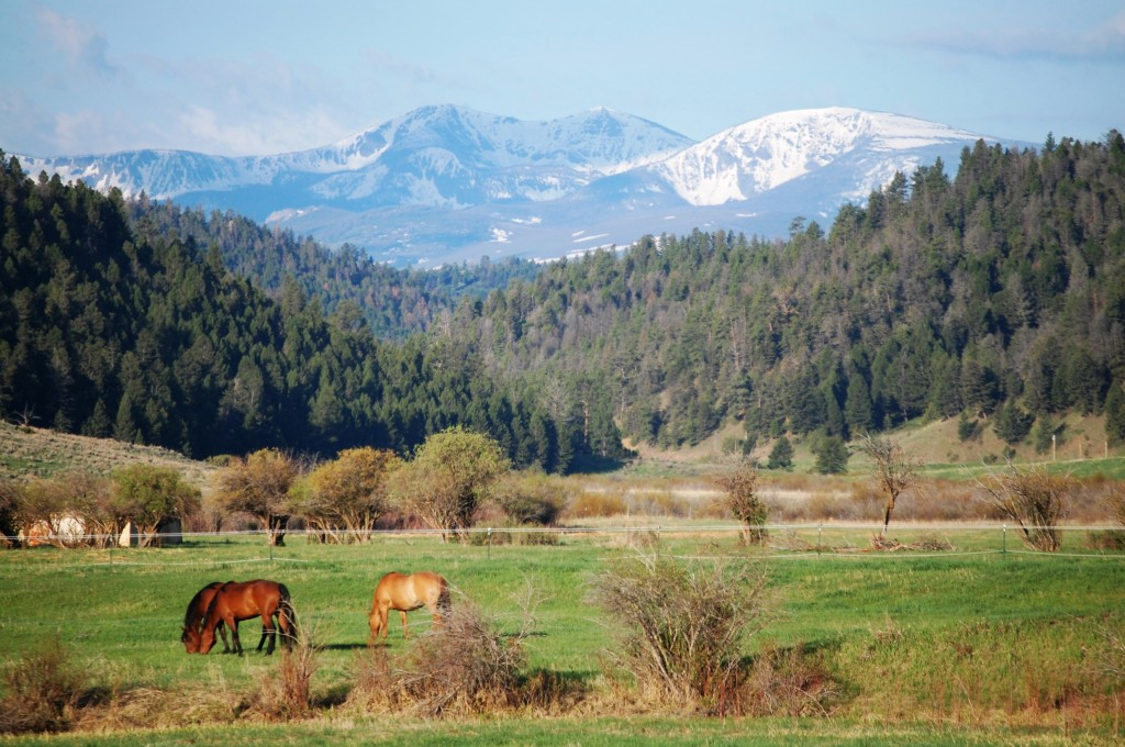 Mountain Scene in Montana