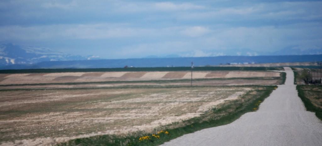 Farmland along the road to Rock City