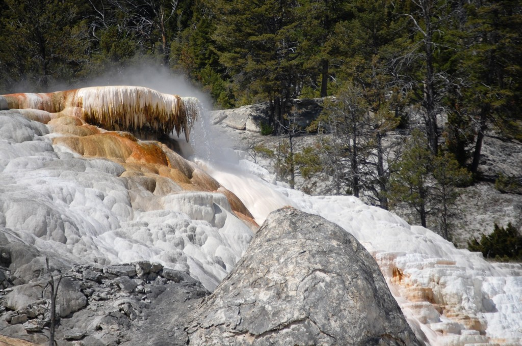 Another view of the Mammoth Hot Springs
