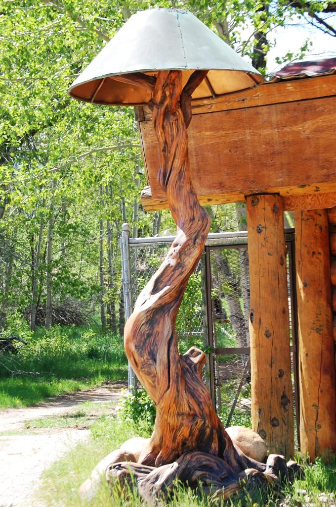 Whimsical Lamp made of juniper at Rock Fork