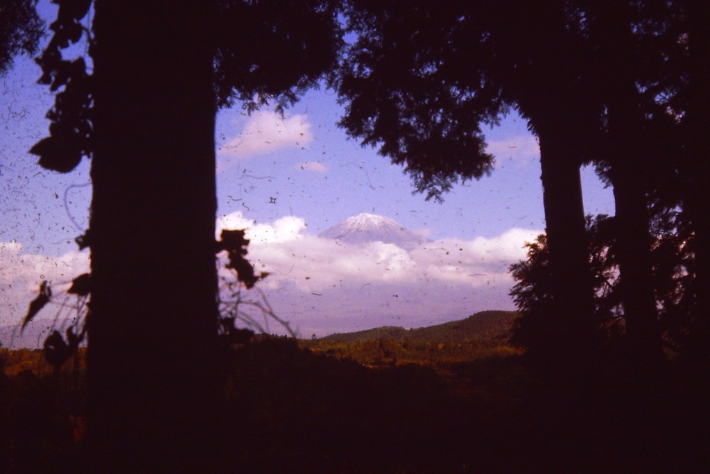 Mt. Fuji in the trees and clouds (ca. 1978)
