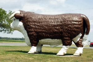 Giant Steer in Gilboa, OH. I have seen many similar ones in other places