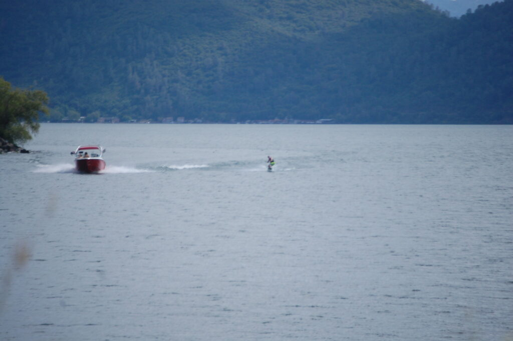Then there are the human types that glide across the water on their skis