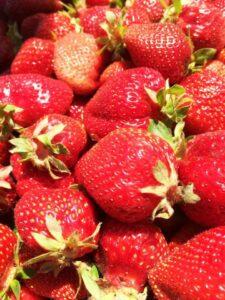 California Strawberries! found near Ukiah, CA