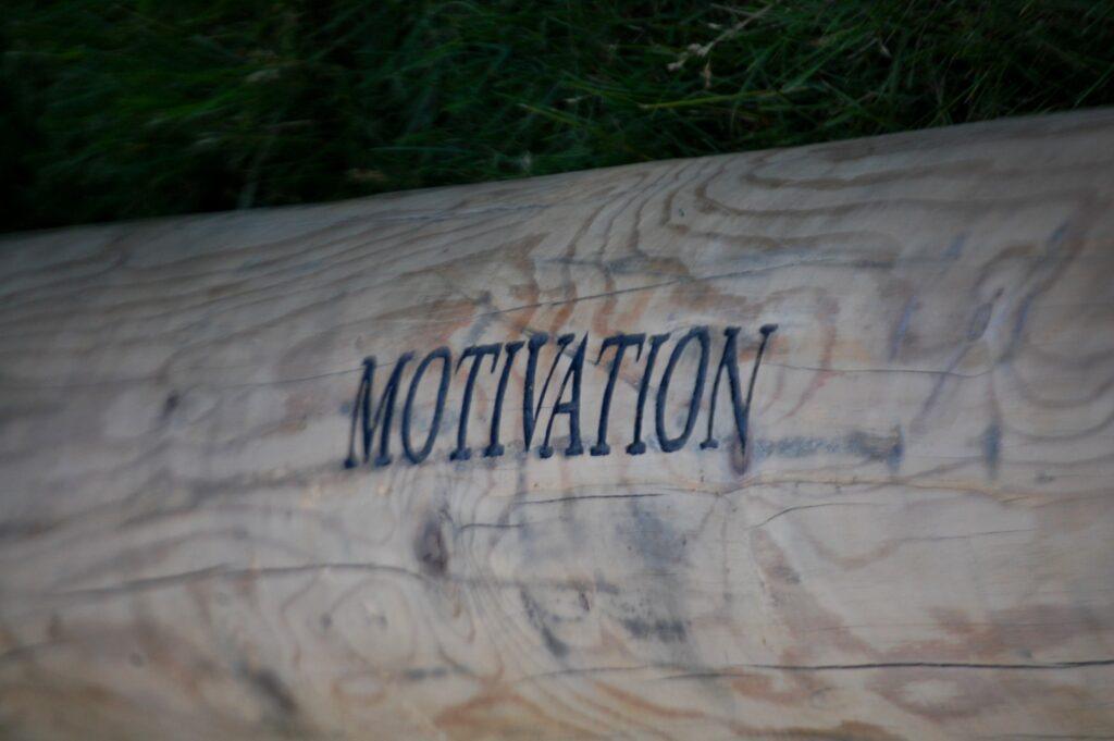 The Motivation Log