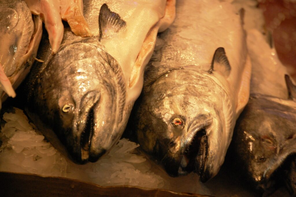 Famous for its fish, Pike Place Market has a number of fish shops and plenty of fish