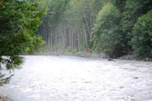 White River runs along WA 410 near Greenwater, WA