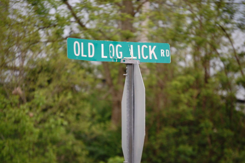 Old Log Lick Road in Trapp, KY. Love the name!!