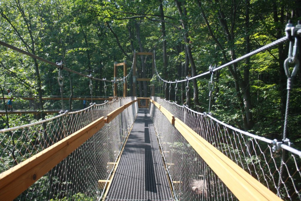 The Murch Canopy Wlk at the Holden Arboretum. (photo from kirtlandchronicle.com)