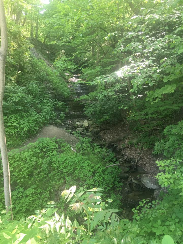 An example of the scenery that can be seen along the Montour Trail