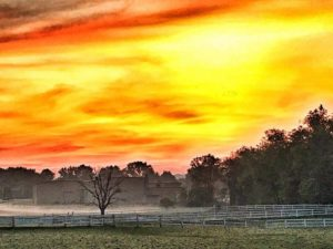 The sunrise near Upper St. Clair, PA