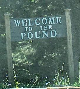 Pound, VA