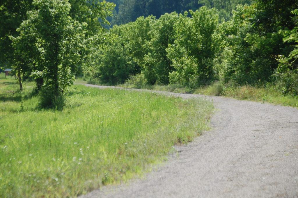 Dawkins Trail